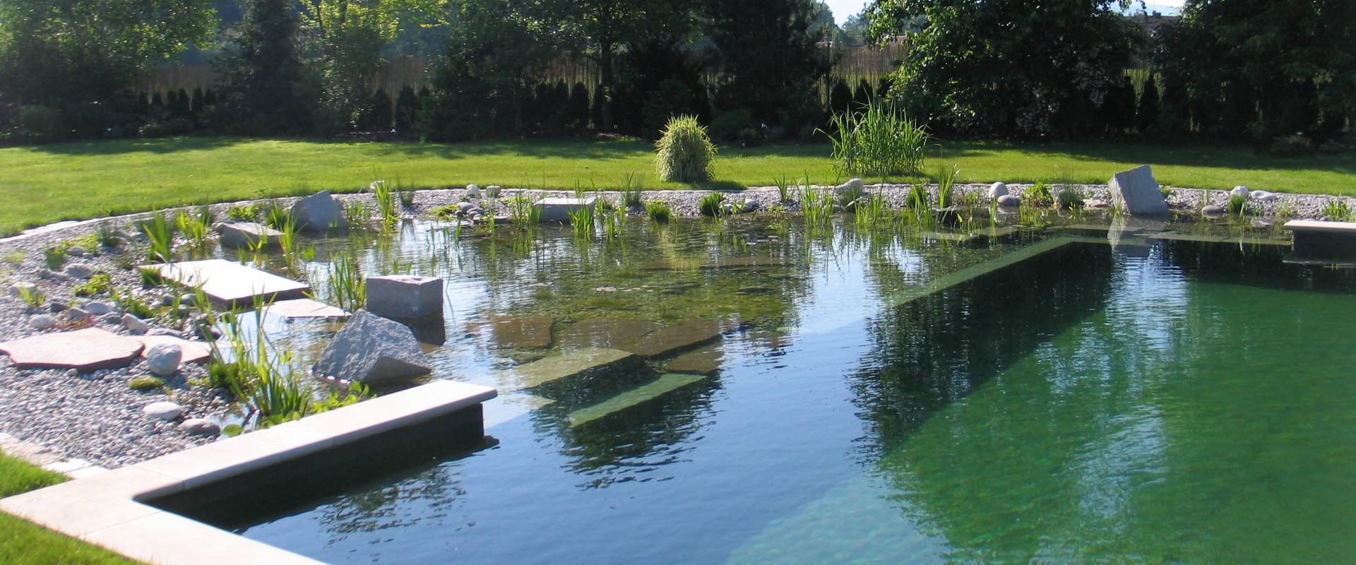 Een zwemvijver een groen alternatief voor een zwembad - Ontwikkeling rond een zwembad ...